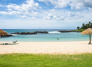 maxico hawaii the better vacation spot
