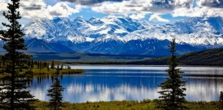 Denali National Park - places to visit in alaska