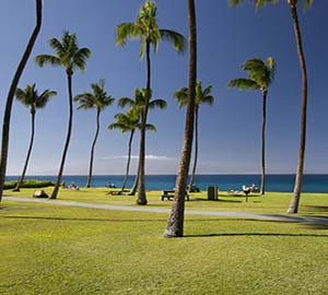 kaanapali beach Attraction: Kahekili Beach Park
