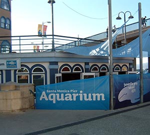 Santa Monica State Beach Attraction: Santa Monica Pier Aquarium
