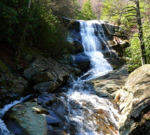 Asheville Attraction: Pisgah National Forest