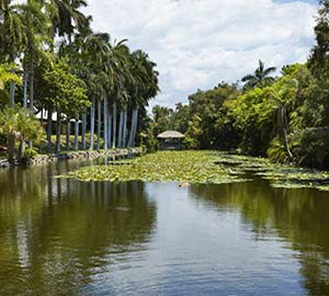 Fort Lauderdale Beach Attraction: Bonnet House Museum & Gardens