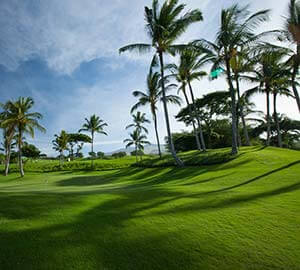 Ka'Anapali Beach Attraction: Golf Courses