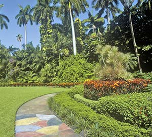St. Petersburg Attraction: Sunken Gardens