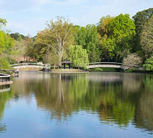 Raleigh Attraction: Pullen Park