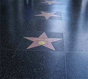 Los Angeles Attraction: Hollywood Walk of Fame