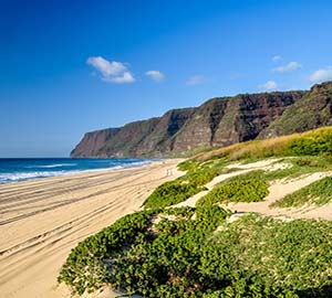 Kauai Attraction: Polihale State Park