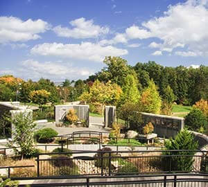Asheville Attraction: North Carolina Arboretum