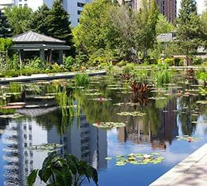 Denver Attraction: Denver Botanic Gardens