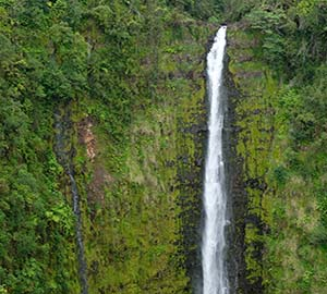 Hawaii - The Big Island Attraction: Akaka Falls State Park and Kahuna Falls