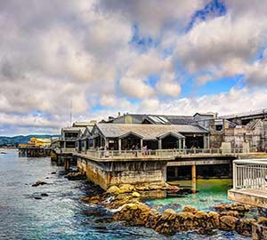 San Jose Attraction: Monterey Bay Aquarium