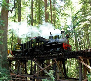 San Jose Attraction: Roaring Camp Railroads