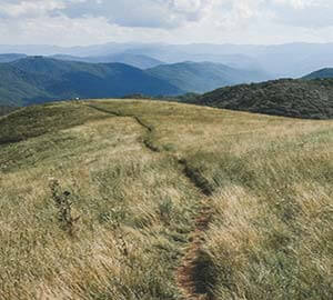 Asheville Attraction: Appalachian Trail