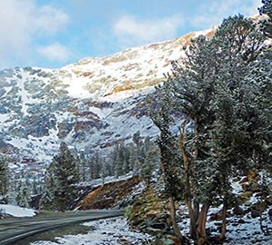 Yosemite National Park Attraction: Tioga Road