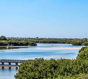 St. Petersburg Attraction: Weedon Island Preserve
