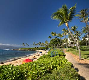 kaanapali beach Attraction: Kapalua Beach