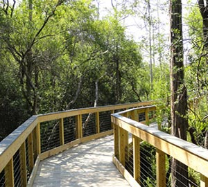 Panama City Beach Attraction: Conservation Park