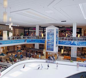 Clearwater Beach Attraction: Westfield Countryside Mall