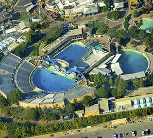 San Diego Attraction: SeaWorld
