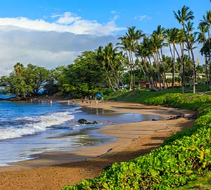 kaanapali beach Attraction: Wailea Beach