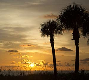 Book Hotels, Condo, Cabins and Cottages Near Crescent Beach In Siesta Key, Florida