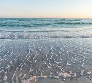 Rent Condo, Cottages, Cabins and Hotels in Golden Beach, Siesta key, FL