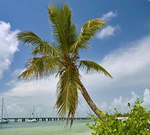 Lower Florida Keys Neighborhoods